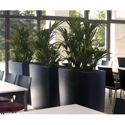 Bac à plantes rectangulaire Trevia 900 K
