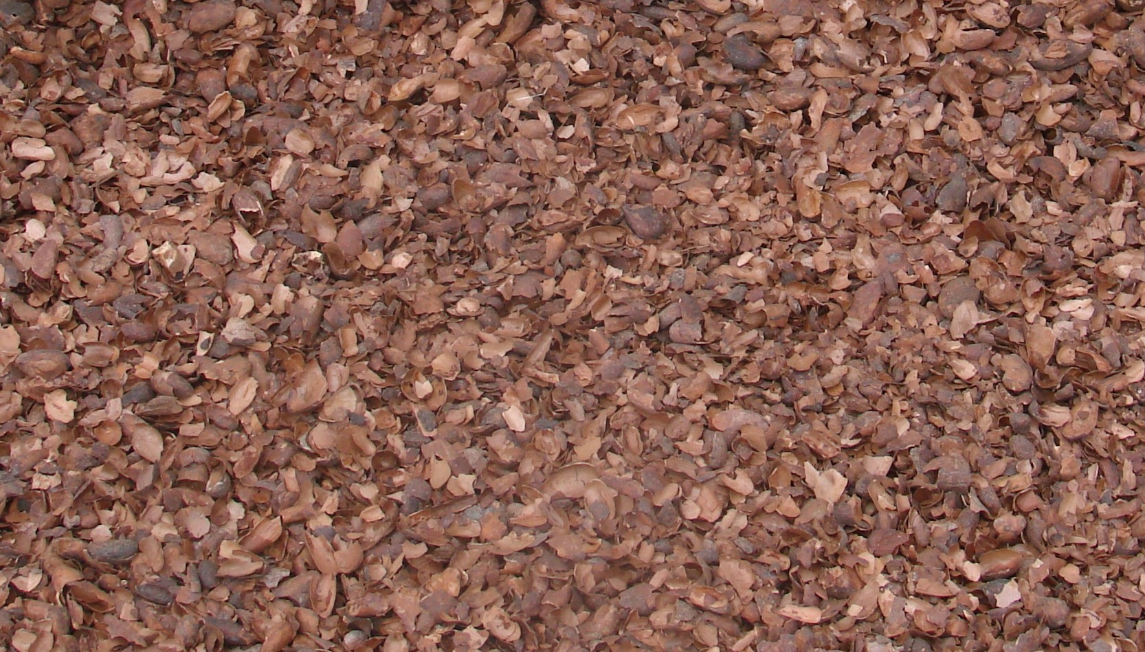 paillage couleur interesting paillage coque de cacao sac de l palette de sacs with paillage. Black Bedroom Furniture Sets. Home Design Ideas