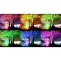 Projecteur solaire RGB à panneau déporté