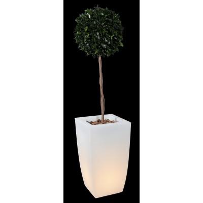 Pot lumineux pour allée de jardin ou décoration