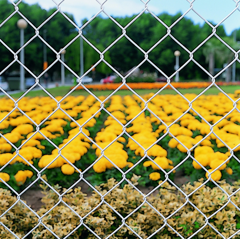 Grillage Jardin Hauteur 2M grillage simple vert galvanisé - dimensions disponibles de 1mx25ml à 2mx25ml