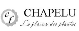 Chapelu