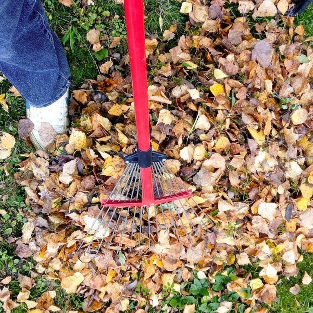 3 conseils naturels pour bien préparer son sol et ses végétaux pour l'automne